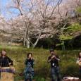 2008/04/06 桜満開お花見ライブ