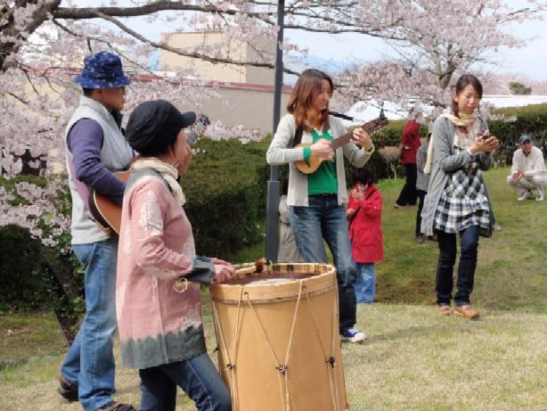 2009/04/05 桜満開お花見ライブ